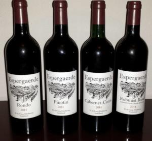 wijnen-2014
